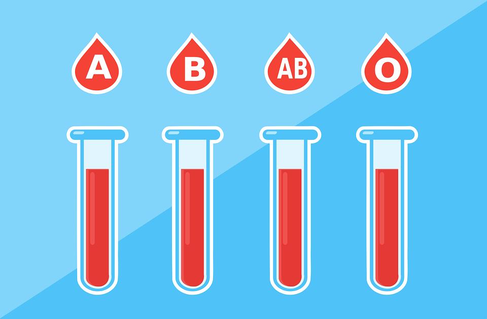 血液型別に分けられた試験管イラスト