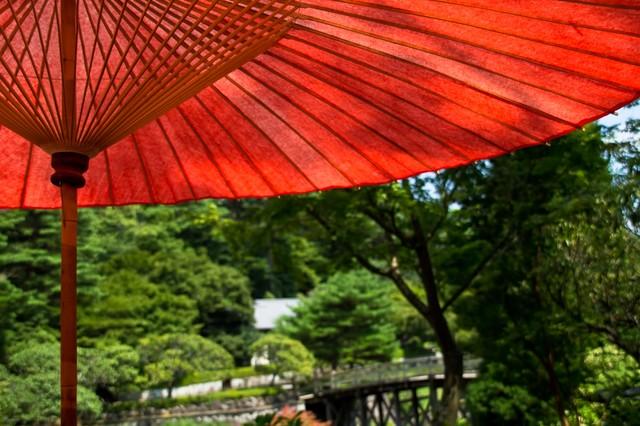和傘から見る景色